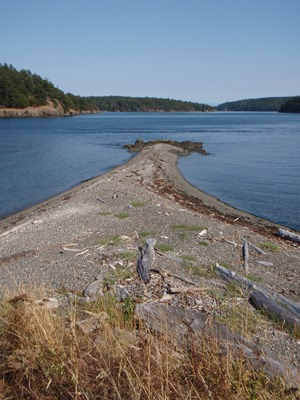 Kayaking - San Juan Islands 053